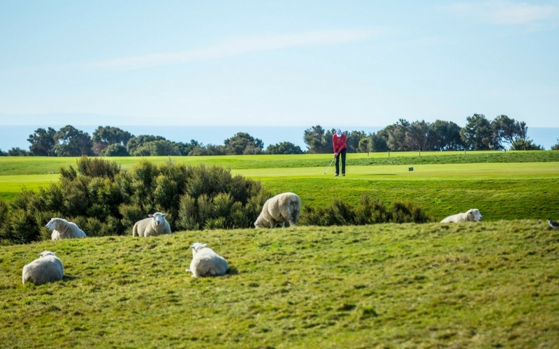 Cape_Kidnappers_Golf_2 (1)