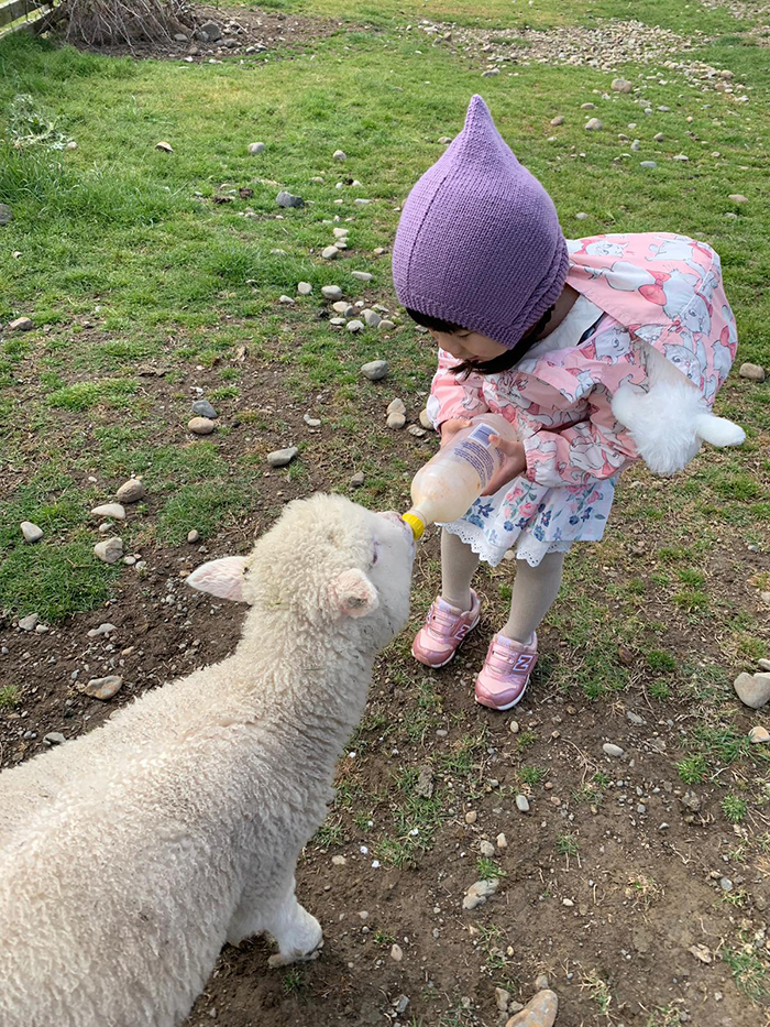 Family-Feeding-the-Lambs