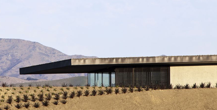 Brancott-Estate-NZ-architecture