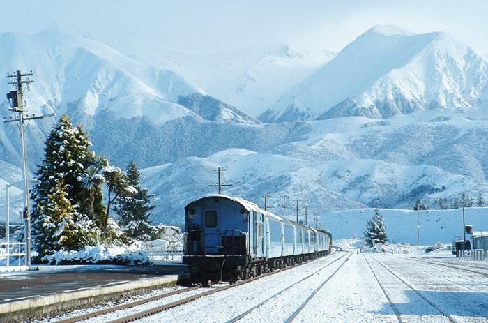 TranzAlpine-Train