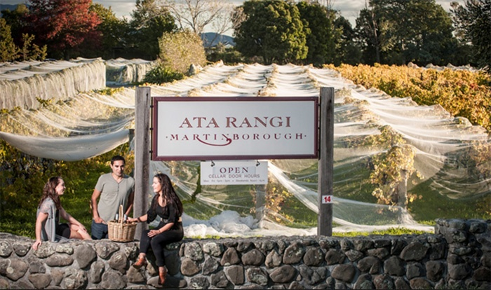 martinborough-winery