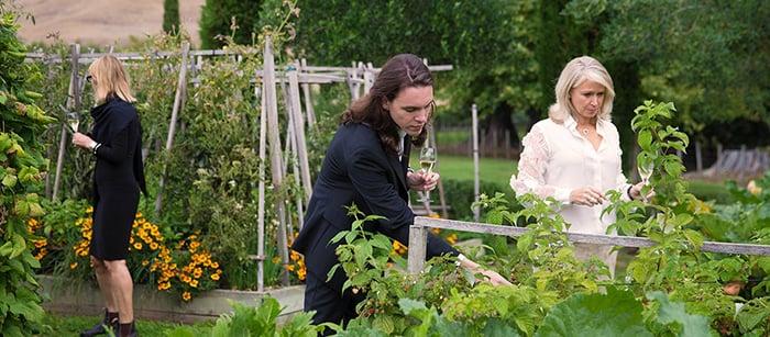 new-zealand-winery-garden