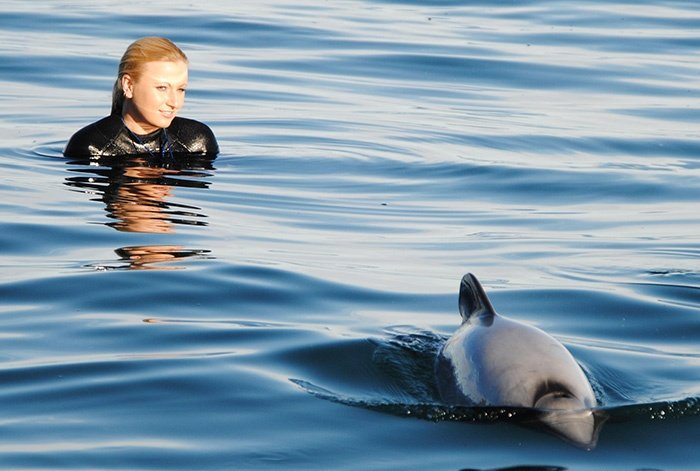 swimming-with-dolphins-in-new-zealand