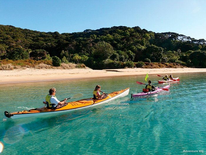 kayaking-northland-new-zealand
